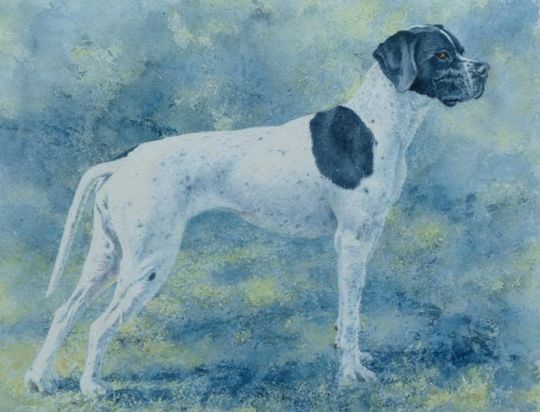 Off Duty - watercolour portrait of a Pointer dog