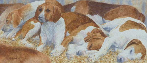 Sleepy Hounds – watercolour painting by Gillie Cawthorne