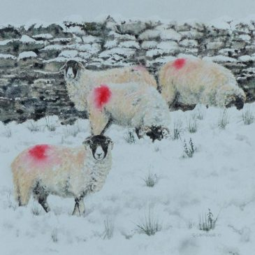 """This Winter's Must-Have Colour"" – sheep painting"