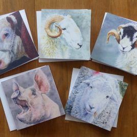 Animal Portrait Art Cards (Pack of 6)