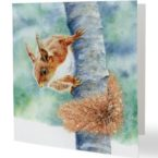 Red Squirrel Painting Card