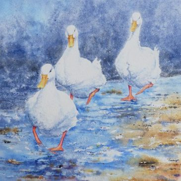 Puddle Ducks – watercolour painting
