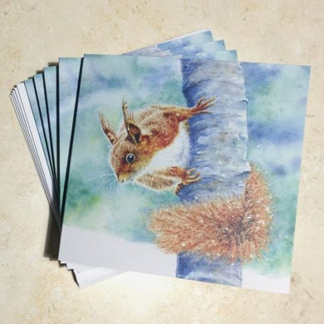 Red Squirrel in Winter 5 card pack