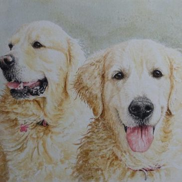 Hector & Sydney Golden Retriever portrait commission