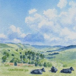 Nent Valley Summer watercolour
