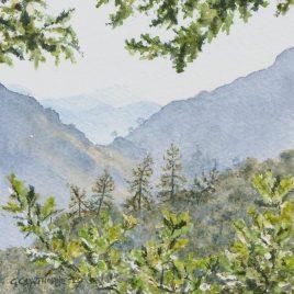 """""""Oak and Larch, Borrowdale"""" watercolour"""