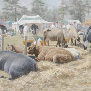 Resting Cattle at Skelton Show, pastel