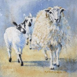 """Swaledale Ewe and Mule Twin lambs 1"" watercolour"