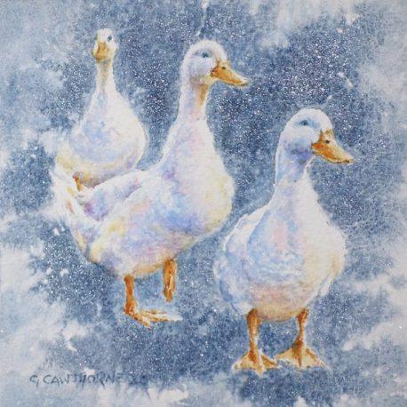 Sparkle Ducks watercolour