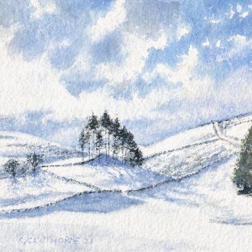 Snowy Copse, Alston Moor